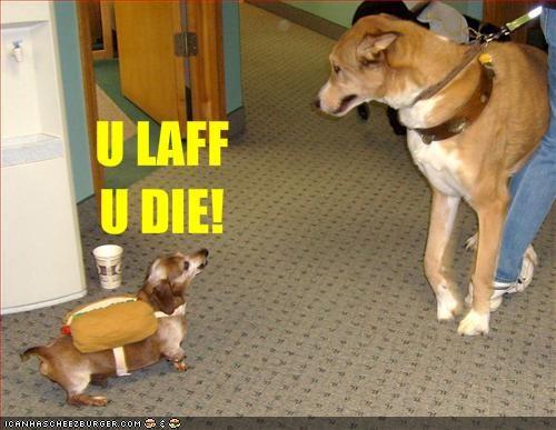 costume dachshund hotdog murder threats whatbreed - 1525482240
