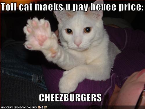 Cheezburger Image 1525544192