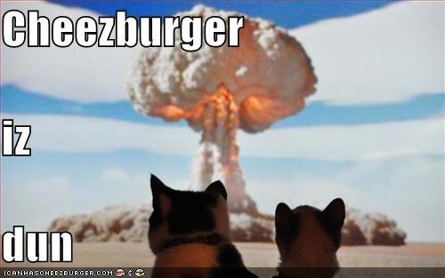 Cheezburger Image 1526111488
