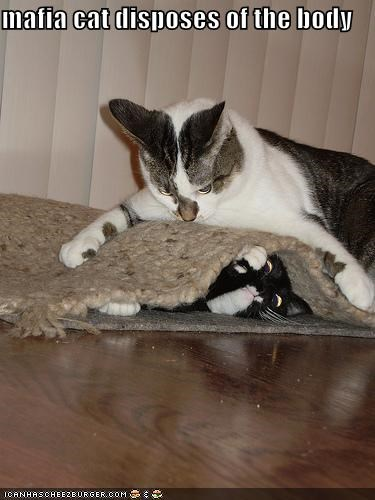 body lolcats mafia murder rug - 1526514944