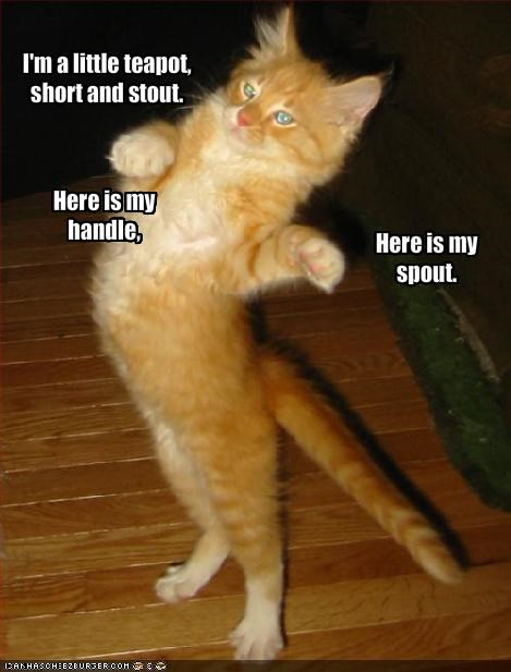 ginger,lolcats,singing,teapot