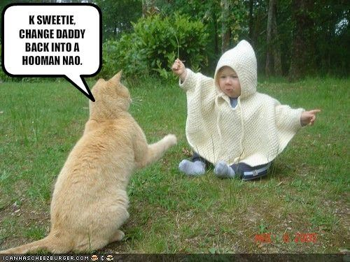 baby daddy human lolcats magic wizard - 1529691904