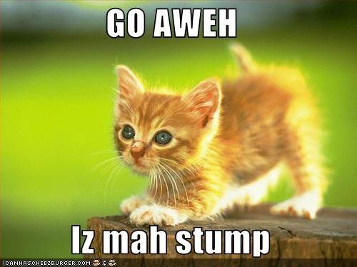 GO AWEH  Iz mah stump