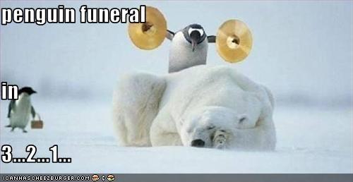 penguin funeral in 3...2...1...