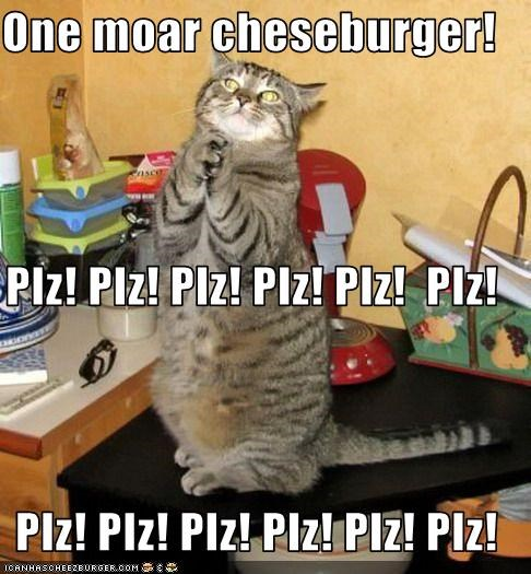 Cheezburger Image 1536295680