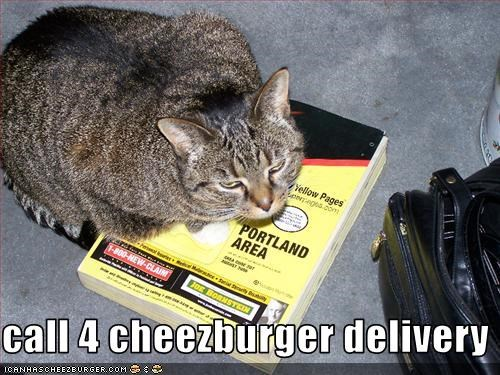 call 4 cheezburger delivery