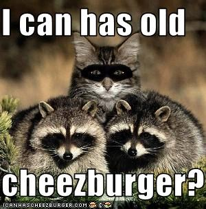 Cheezburger Image 1538932992