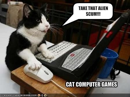 CAT COMPUTER GAMES - Cheezburger - Funny Memes | Funny Pictures