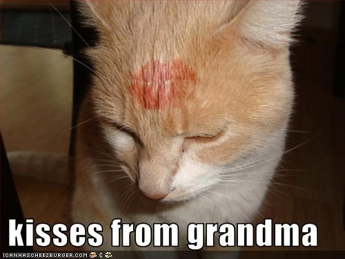 embarrassing,grandma,KISS,lipstick,lolcats