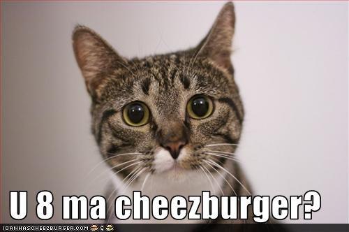 Cheezburger Image 1543524096