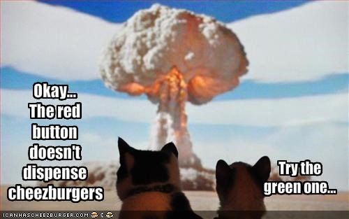 bad cat cheezburgers destruction oh noes - 1545289472