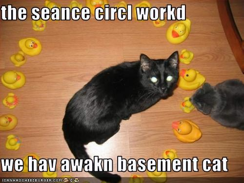 basement cat lolcats magic rubber duck seance - 1548329728