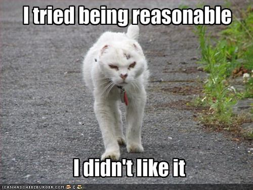grumpy lolcats outside reasonable - 1548510464