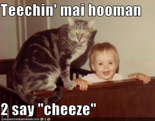 baby cheez hooman lolcats teaching - 1549397760