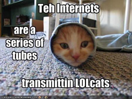 burrito,internet,lolcats,purrito,sleeve,tubes