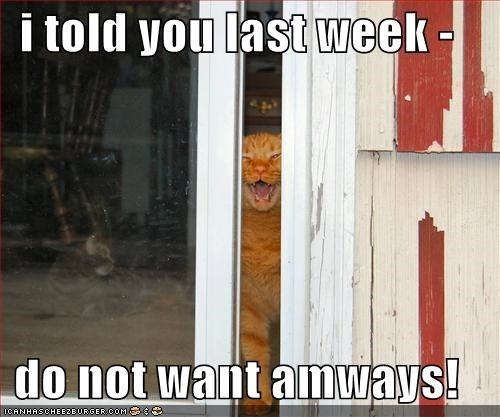 i told you last week -  do not want amways!
