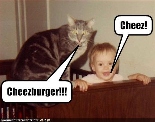 Cheezburger Image 1551094528