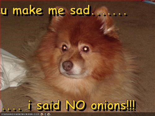 U Make Me Sad I Said No Onions Cheezburger Funny