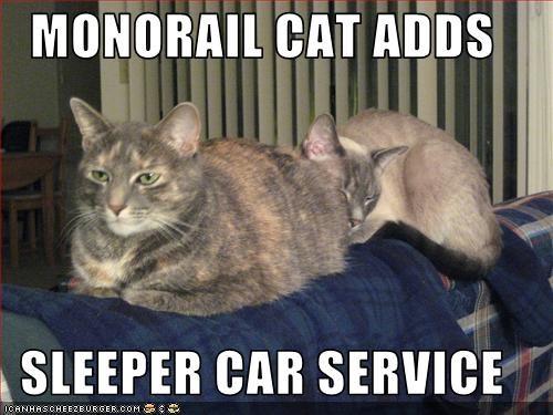 car lolcats monorail cat sleeping - 1554204928
