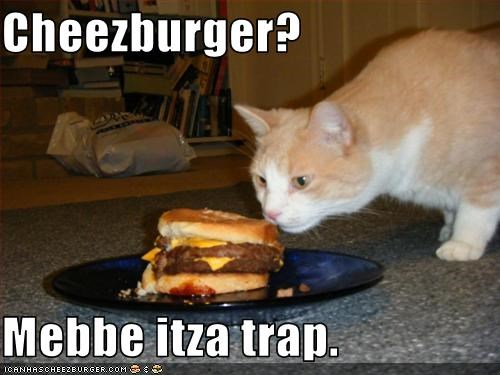 Cheezburger?  Mebbe itza trap.
