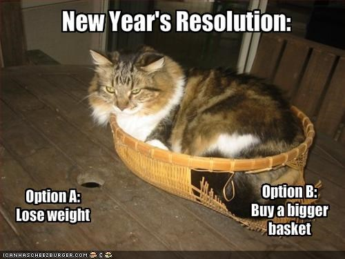 basket fat lolcats new year resolutions - 1555309824