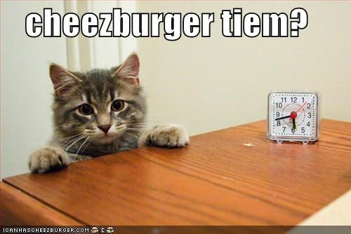 Cheezburger Image 1556532480