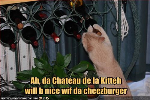 cheezburger ginger lolcats restaurant wine - 1556955392