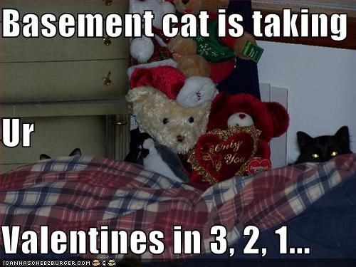 Basement cat is taking  Ur Valentines in 3, 2, 1...