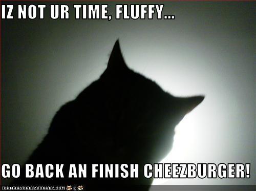 Cheezburger Image 1558449408