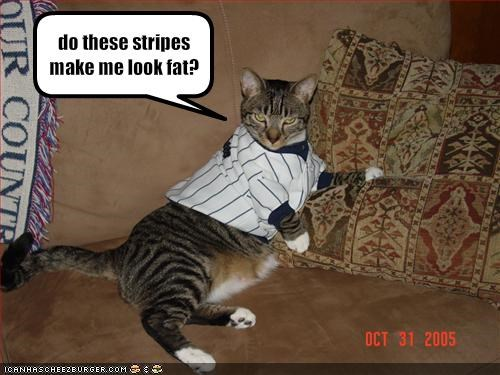 do these stripes make me look fat?