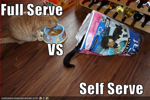 Full Serve                 VS Self Serve