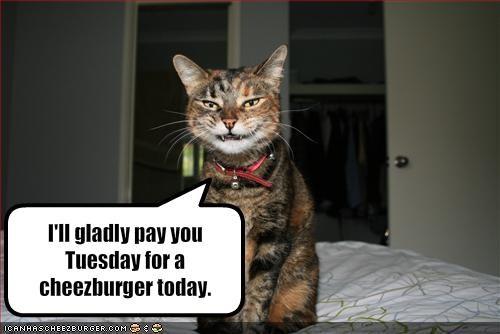 Cheezburger Image 1560336128