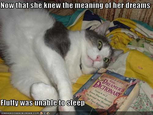 books dreams lolcats scared - 1567666432