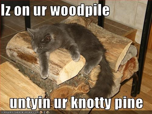 Iz On Ur Woodpile Untyin Ur Knotty Pine Cheezburger Funny Memes