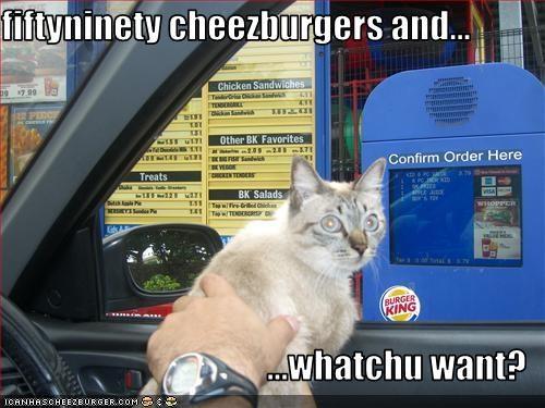 Cheezburger Image 1577719552