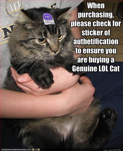 genuine lol lolcats sticker store - 1581415680