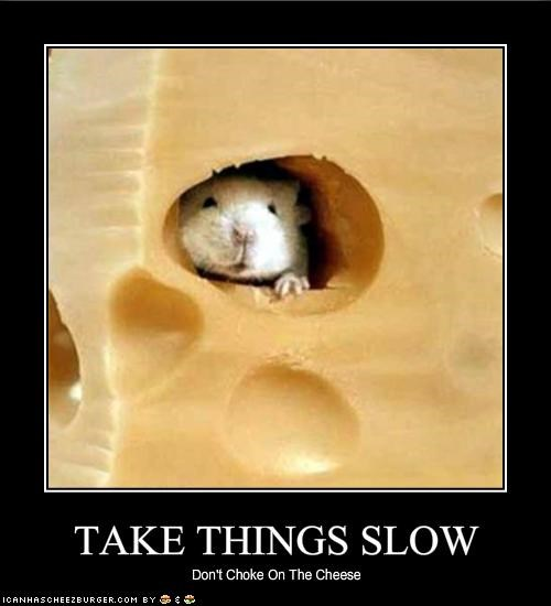 TAKE THINGS SLOW - Cheezburger - Funny Memes | Funny Pictures