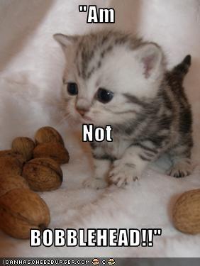 bobblehead i am not kitten lolkitteh - 1585528576