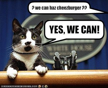 Cheezburger Image 1585809664