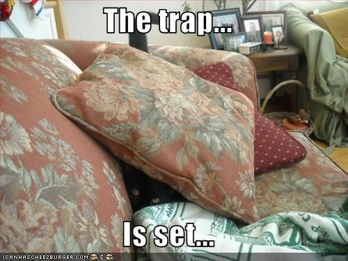 couch plotting trap - 1586001152