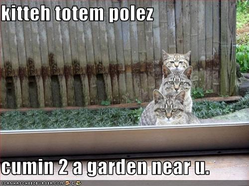 decorations garden lolcats totem - 1588458240