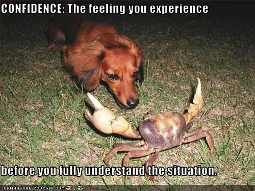 confidence,crab,dachshund,lolcrabs,uh oh