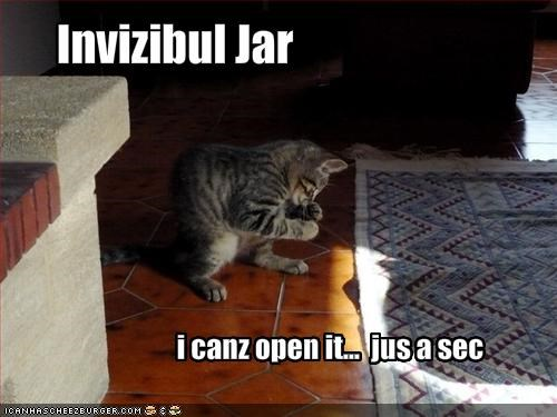 cyoot kitteh of teh day,invisible,jar,kitten