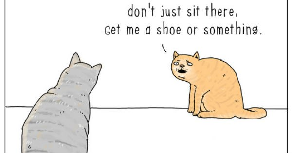 webcomics of animals and the common situations they find themselves in