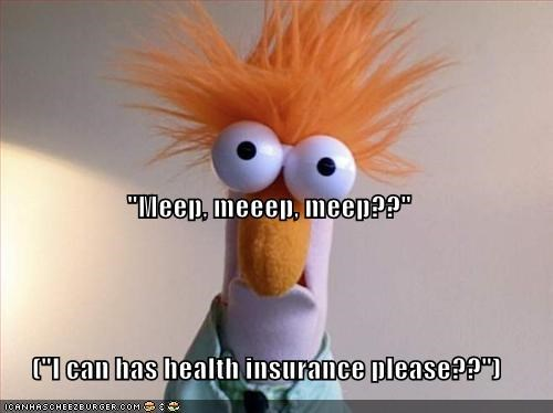 Meep Meeep Meep I Can Has Health Insurance Please Cheezburger Funny Memes Funny Pictures