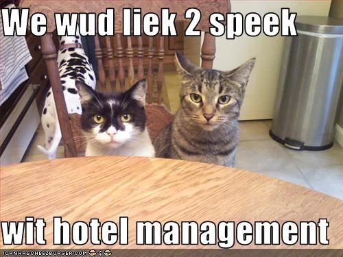 We Wud Liek 2 Speek Wit Hotel Management Cheezburger Funny Memes
