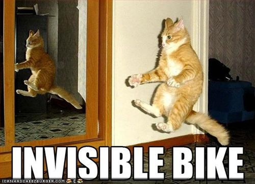 Funny cat meme of a cat on an invisible bike, or at least that is what it looks like because of how the cat is positioned in mid-air.