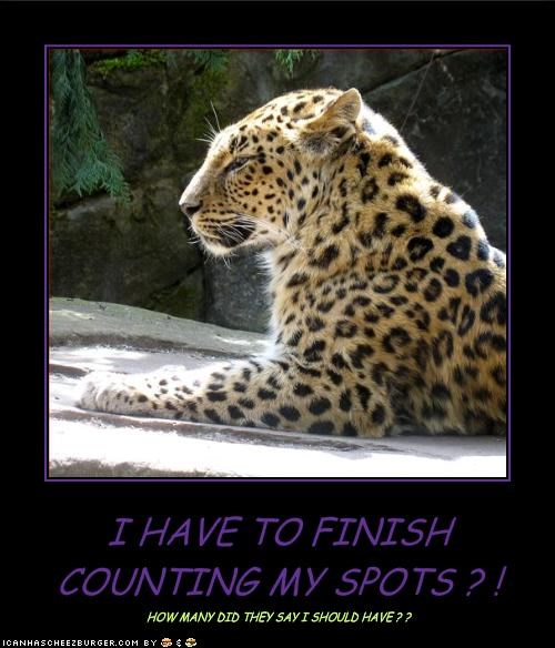I HAVE TO FINISH COUNTING MY SPOTS ? !