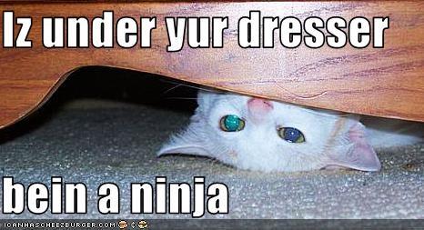 Iz under yur dresser  bein a ninja