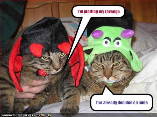 angry costume lolcats revenge - 1599162624